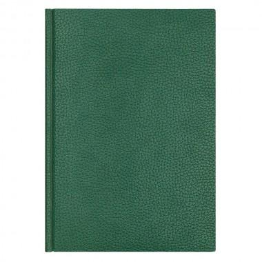Ежедневник Dallas 5463 145x205 мм, зеленый , белый блок, черно-синяя графика, 2019