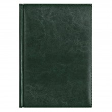 Eжедневник недатированный Birmingham 145х205 мм, без календаря, зеленый