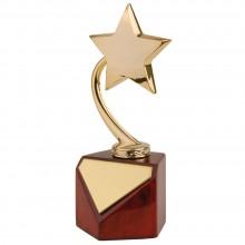 Наградная стела «Звезда»